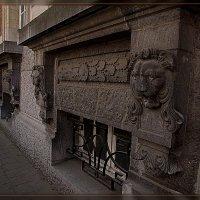 стенной прайд :: Petr Popov