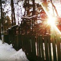 Кусочек зимнего Томилино в январе 2015 года :: Ольга Кривых