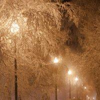 Власть мороза :: Александр Богданов