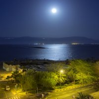 Лунная ночь :: Алексей Окунеев
