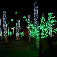 Новогодний Тбилиси :: Наталья Джикидзе (Берёзина)