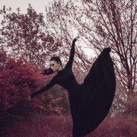 Танец :: Ангелина Косова
