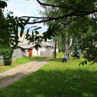 Будни деревни :: Татьяна Ломтева