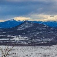 Зимний пейзаж :: Александр Хорошилов