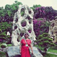 Сад камней :: Наталья