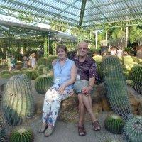 В саду кактусов. :: Чария Зоя