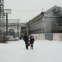 Зимний день. :: Анфиса