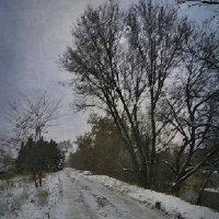 Декабрь. :: Ирина Сивовол