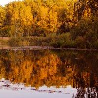 осень :: Краснов  Ю Ф