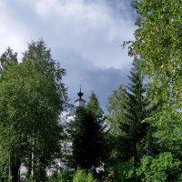 В лесах :: Валерий Талашов
