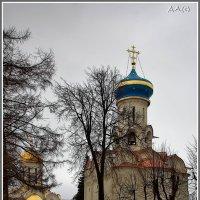 в Троице-Сергиевой лавре :: Дмитрий Анцыферов