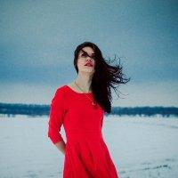 Крадущийся в тени :: Софья Коцарева