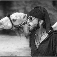 Кто меня верблюдом назвал?! :: Владимир Колесников