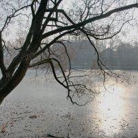 Морозное утро в Загорске :: Надежда Баликова
