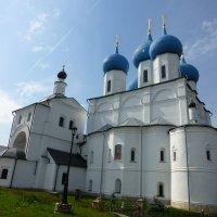 Высоцкий мужской монастырь г.Серпухов. :: Юрий Мошкин