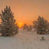 Вечер в Якутии :: Михаил Потапов