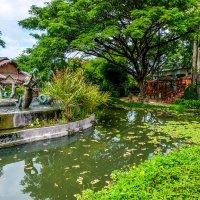 Тайланд. В маленьком парке по пути в Аюттайю. :: Rafael