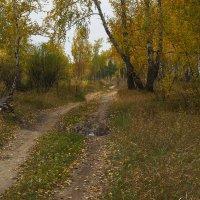 Осень :: Kassen Kussulbaev