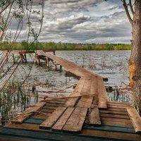 На карповом пруду :: Олег Помогайбин