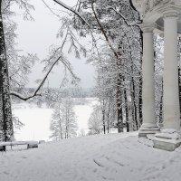 вид на замерзший пруд :: Galina