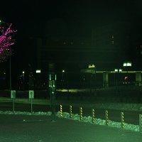 Зимним вечером :: Светлана SvetNika17