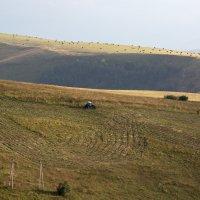 Один в поле ... :: Vadim77755 Коркин