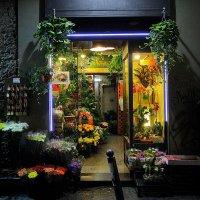 Цветочный рай :: M Marikfoto