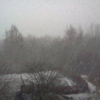 Разгулялась  за окошком непогода. :: Серж Поветкин
