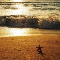 Обнимая море :: Swetlana V