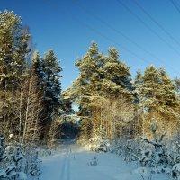 зима в Костроме :: Михаил Жуковский