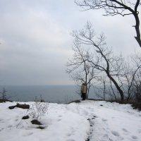 Зимний пейзаж :: Людмила