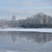Зима :: Vera Hloponina