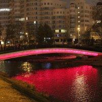 Мост :: Станислав Янушко