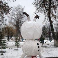 Снеговик вверх ногами :: Андрей Сотников