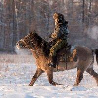 Всадник зимой :: Михаил Потапов