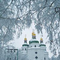 Золотые купола... :: Александр Бойко