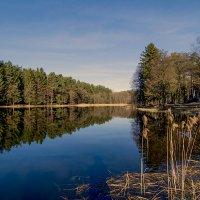 Утренняя, озерная :: Vladimir