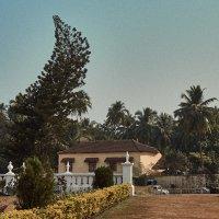 Индия, Гоа :: Val Савин