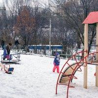 Зимние радости :: Владимир Кроливец