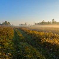 Атмосфера осеннего утра :: Валентин Котляров