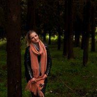 forest :: mihael shwarzman