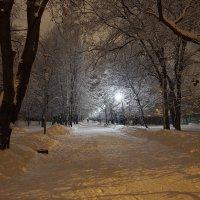 Вечерний парк :: Сергей
