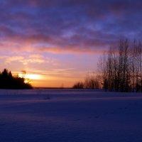зимний закат :: Алексей Логинов