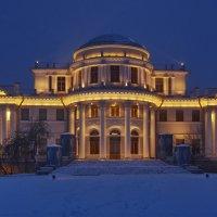 Елагинский дворец. :: Ирина Нафаня