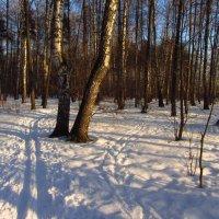 IMG_0857 - Сегодня морозно, но снега мало :: Андрей Лукьянов