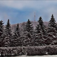 Зимний пейзаж :: Александр Смольников