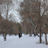 Ночью был снег :: Олег Афанасьевич Сергеев