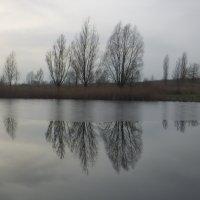 Пейзаж... :: Владимир Секерко