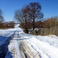 Согретый солнышком январь... :: Лесо-Вед (Баранов)