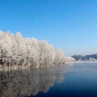 Зимнее озеро :: Татьяна Нижаде